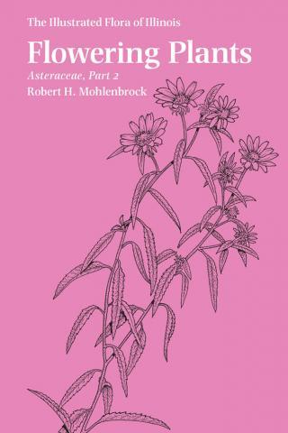 Flowering Plants: Asteraceae, Part 2